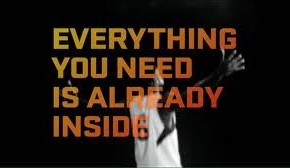 Everything you need quote